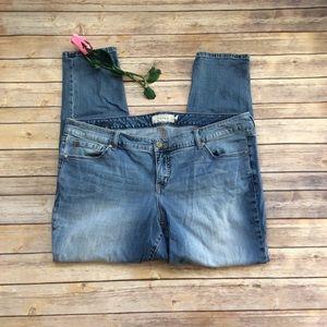 Torrid straight leg low rise jeans size 20